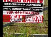 VENDO CAMPO DE 66HA EN ALMAFUERTE