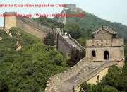 Intérprete/traductor /guía chino español en shanghai, china
